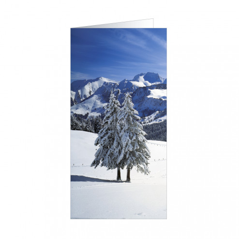 Snowtree (5166)