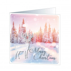 Merry Christmas (5771)